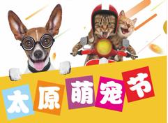 2019太原宠物产业博览会