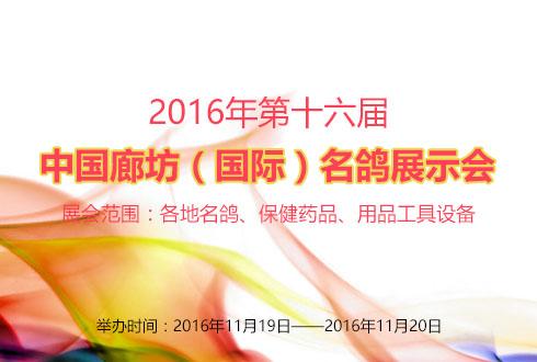 2016年河北第十六屆中國廊坊(國際)名鴿展示會