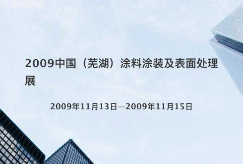 2009中国(芜湖)涂料涂装及表面处理展