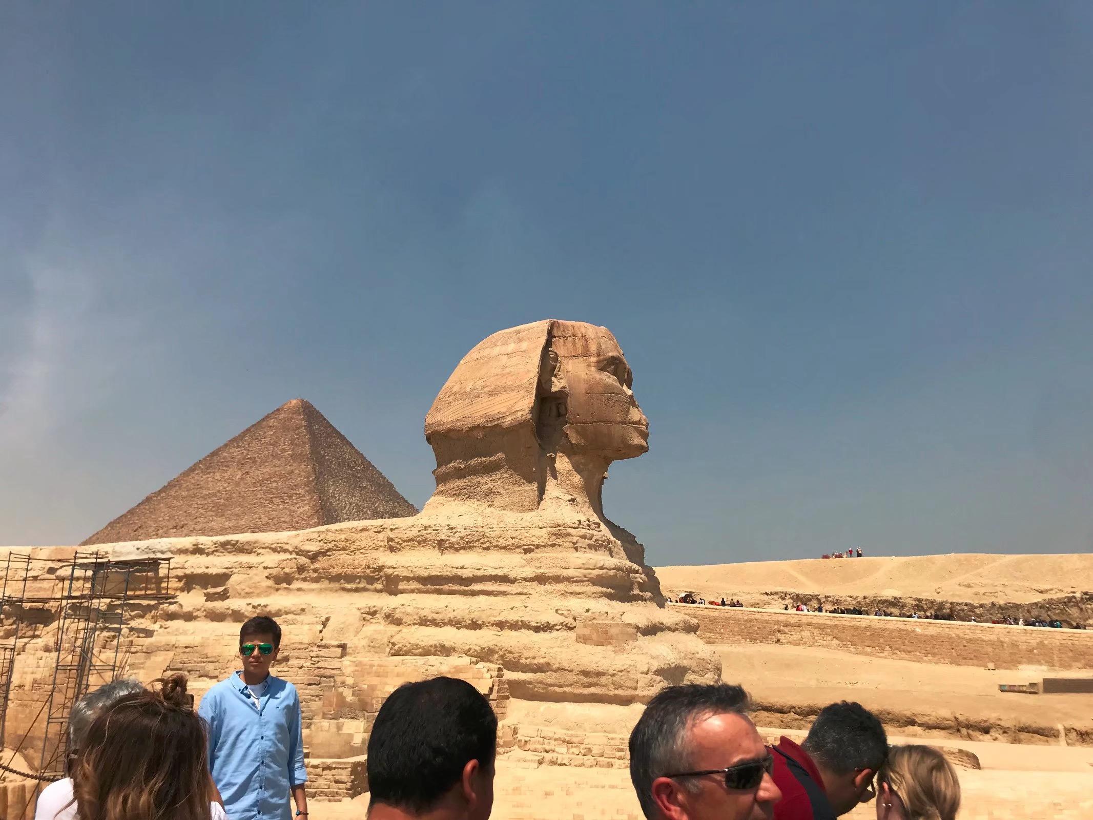 2020年埃及国际医药暨制药技术展PharmaconexEgypt