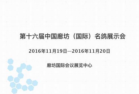 第十六届中国廊坊(国际)名鸽展示会