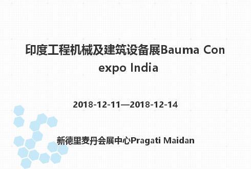 印度工程机械及建筑设备展Bauma Conexpo India