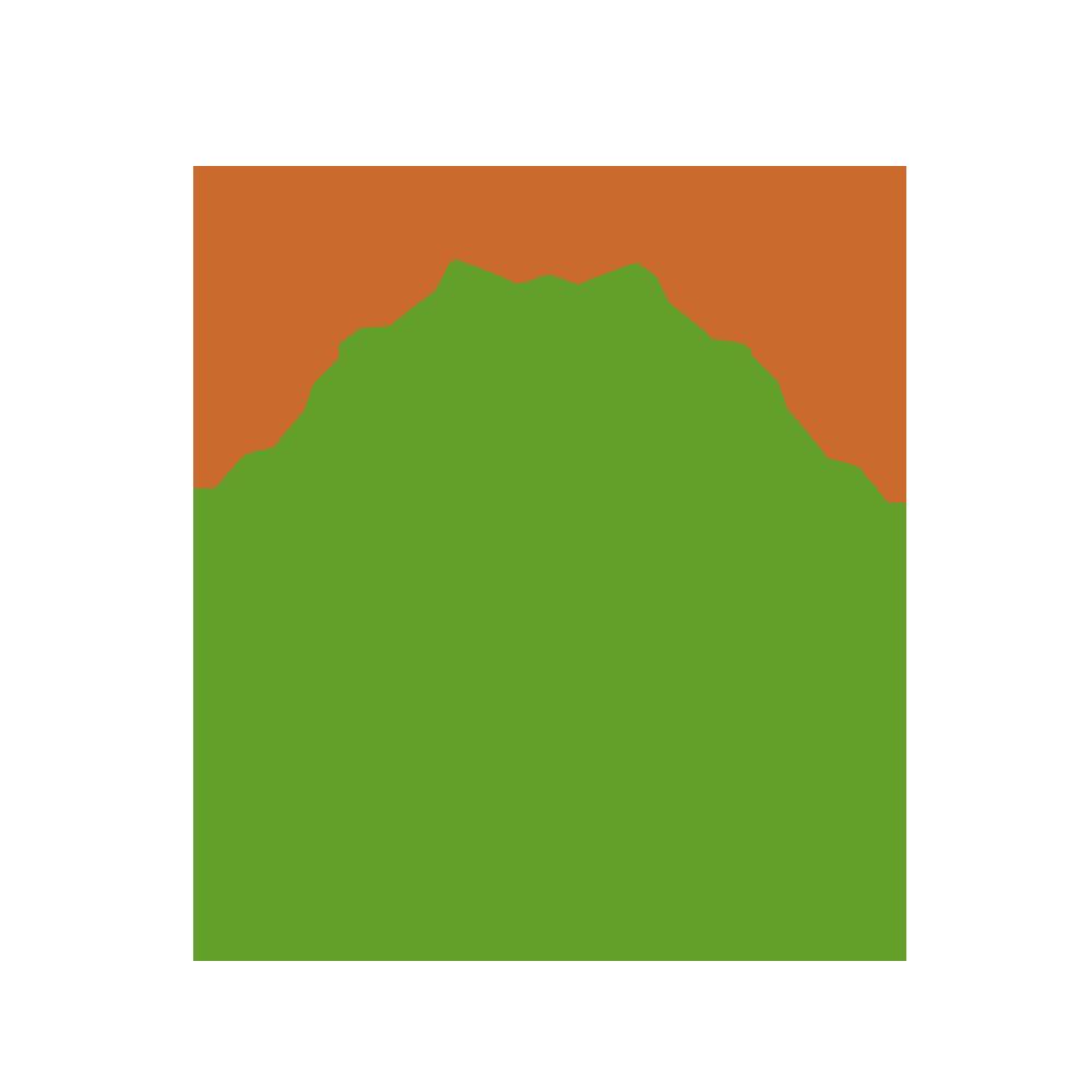 第十三届中国绿色食品博览会