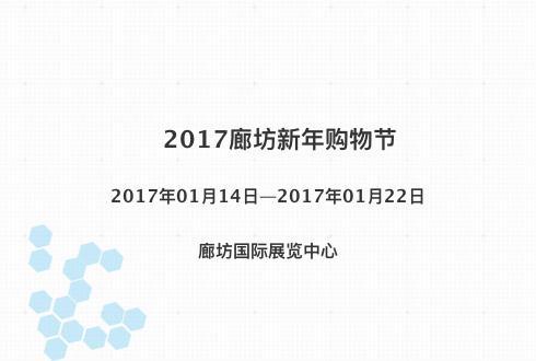 2017廊坊新年购物节