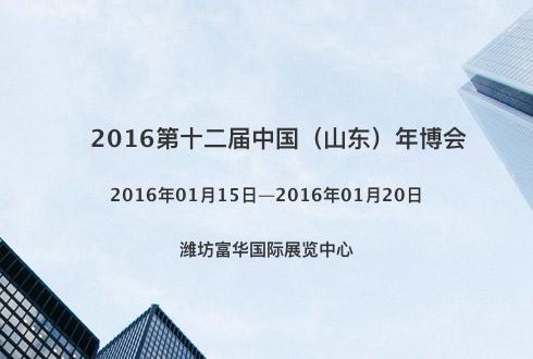 2016第十二届中国(山东)年博会